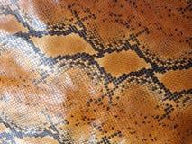 Afrikaans de huidpatroon van de rotspython Royalty-vrije Stock Afbeeldingen