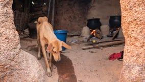 Afrikaans dorp stock afbeeldingen