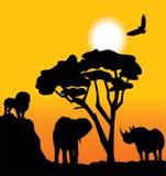 Afrikaans landschap Royalty-vrije Illustratie