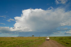 Afrikaans landschap, Masai Mara, Kenia - op safari Royalty-vrije Stock Afbeeldingen