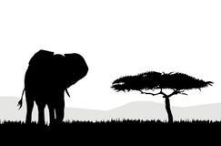 Afrikaans Olifant & landschap Stock Illustratie