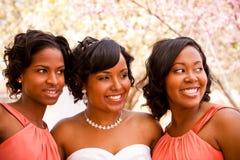 Afrikaanse Amerikaanse bruid met haar bruidsmeisjes Royalty-vrije Stock Foto's
