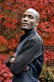 Afrikaanse Amerikaanse Zakenman Royalty-vrije Stock Foto's