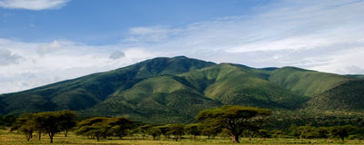 Afrikaanse berg Stock Foto