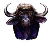 Afrikaanse buffelsilustration stock foto's