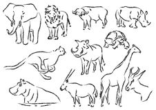Afrikaanse Dieren Royalty-vrije Stock Foto's