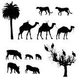 Afrikaanse dieren, silhouetten Stock Afbeeldingen
