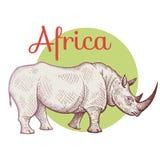 Afrikaanse dierlijke rinoceros stock illustratie