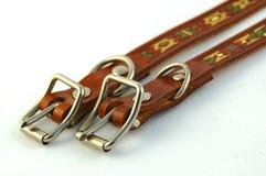 Afrikaanse halsbanden Royalty-vrije Stock Fotografie