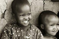 Afrikaanse jonge geitjes Stock Afbeelding