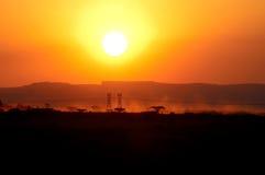 Afrikaanse landbouwgrond Royalty-vrije Stock Foto's