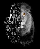 Afrikaanse leeuw Vector Illustratie