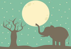 Afrikaanse nacht met leuke het beeldverhaalillustratie van het olifantssilhouet Royalty-vrije Stock Foto's