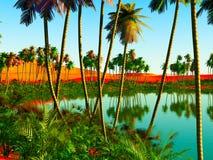 Afrikaanse oase royalty-vrije stock foto's