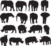 Afrikaanse olifant en de witte contour van het rinocerossilhouet Stock Foto