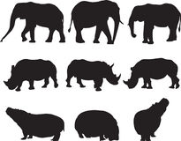 Afrikaanse olifant, witte rinoceros en de contour van het hipposilhouet Stock Foto's