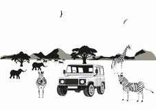 Afrikaanse safari Stock Fotografie