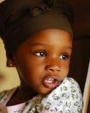 Afrikaanse Schoonheid Stock Afbeelding