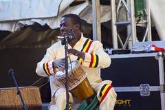 Afrikaanse slagwerker Royalty-vrije Stock Fotografie