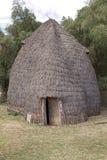 Afrikaanse stammenhut Stock Foto