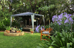 Afrikaanse Tuin met Agapanthus Stock Foto