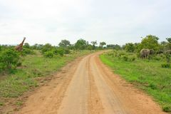 Afrikaanse weg Stock Foto's