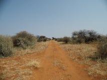 Afrikaanse weg stock afbeelding