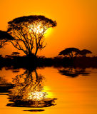 Afrikaanse zonsondergang met bezinning Royalty-vrije Stock Foto