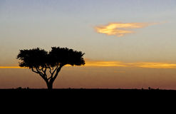 Afrikaanse Zonsopgang Stock Afbeelding