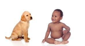 Afrikanen behandla som ett barn och den labrador valpen Arkivfoton