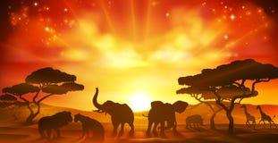 Afrikaner Safari Animal Savannah Silhouette Scene lizenzfreie abbildung