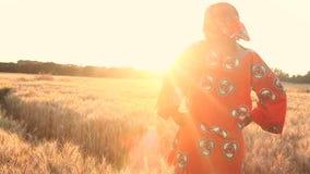 Afrikanerin in der traditionellen Kleidung, die auf einem Gebiet von Ernten bei Sonnenuntergang oder Sonnenaufgang steht stock video footage