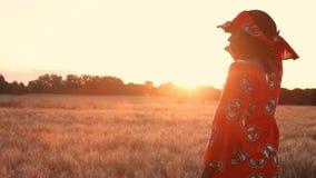 Afrikanerinlandwirt in der traditionellen Kleidung, die auf einem Gebiet von Ernten, Weizen oder Gerste, in Afrika bei Sonnenunte stock video footage
