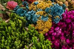 Afrikanische Blumen am lokalen Blumenmarkt Stockfotografie