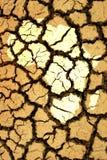 Afrikanische Dürre Stockbild