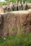Afrikanische Elefanten bei Busch arbeitet, Tampa Florida im Garten Stockbilder