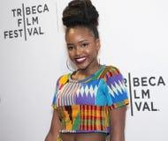 Afrikanische Farbe, Design, Mode und Schönheit Lizenzfreies Stockfoto