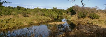 Afrikanische Flusslandschaft Stockfoto