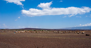 Afrikanische Hütten Stockfotografie