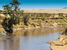 Afrikanische Landschaft mit einem Fluss und einem Krokodil  Lizenzfreie Stockbilder