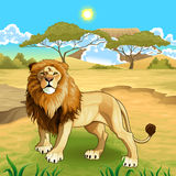 Afrikanische Landschaft mit Löwekönig Lizenzfreies Stockfoto