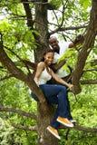 Afrikanische Paare des glücklichen Spaßes im Baum stockfotos