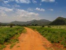 Afrikanische Savanne lizenzfreies stockfoto