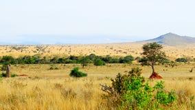 Afrikanische Savannenlandschaft stockfotografie