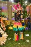 Afrikanische Show Lizenzfreie Stockbilder