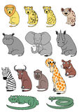 Afrikanische Tiere Stockfotos