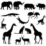 Afrikanische Tiere lizenzfreie abbildung
