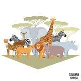 Afrikanische Tiere des Savannenelefanten, Nashorn, Giraffe, Gepard, Zebra, Löwe, Flusspferd lokalisierten Karikaturvektorillustra Stockfotografie