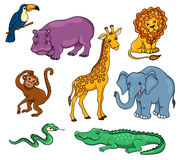 Afrikanische Tiere eingestellt Lizenzfreies Stockbild