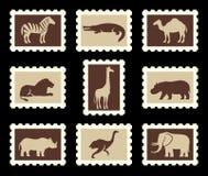 Afrikanische Tiere eingestellt vektor abbildung